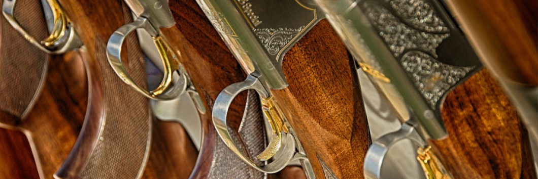 83e8479d0 Licencia na predaj zbraní a streliva | FONTIONNEL