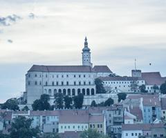 Založení a.s. v České republice